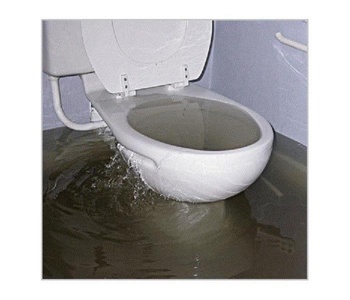 Water Damage What Plumbers Say Cause Drain Issues